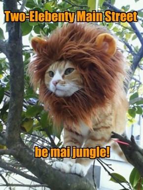 King ob da Jungle!