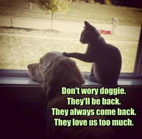 Don't wory doggie. They'll be back. They always come back. They love us too much.
