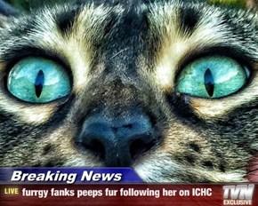 Breaking News - furrgy fanks peeps fur following her on ICHC