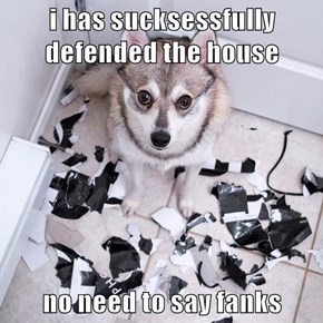 i has sucksessfully defended the house  no need to say fanks