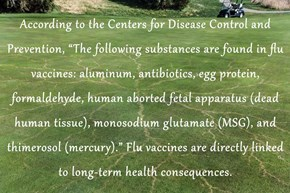 """According to the Centers for Disease Control and Prevention, """"The following substances are found in flu vaccines: aluminum, antibiotics, egg protein, formaldehyde, human aborted fetal apparatus (dead human tissue), monosodium glutamate (MSG), and thimeros"""