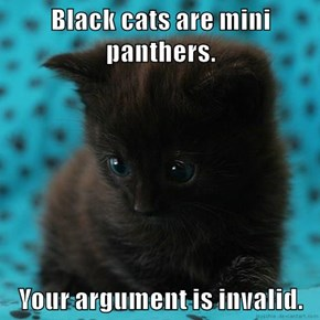 Black cats are mini panthers.  Your argument is invalid.