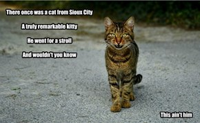 There once was a cat from Sioux City  A truly remarkable kitty  He went for a stroll  And wouldn't you know