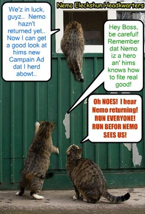 KKPS 2015: Thuggo jumps to teh open window to Nemo's Eleckshun Headkwarters to sneak in! Thuggo's too Campain helpers Derby an' Gordie watch owt for Nemo in case hims comes back too soon..