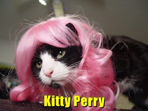 Kitty Perry