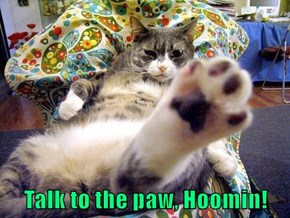 Talk to the paw, Hoomin!