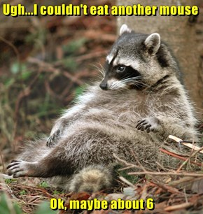 Ugh...I couldn't eat another mouse  Ok, maybe about 6