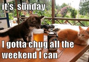 it's  sunday  I gotta chug all the weekend I can