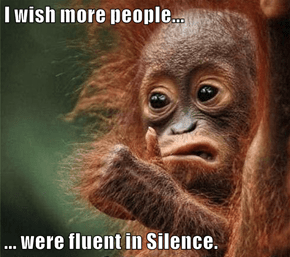 I wish more people...  ... were fluent in Silence.