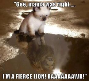 """""""Gee, mama was right ....  I'M A FIERCE LION! RAAAAAAAWR!"""""""