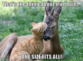 That's the thing about true love ...  ONE SIZE FITS ALL!