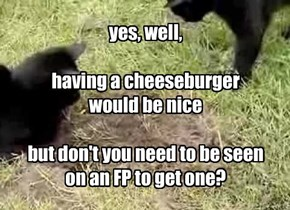 yes, well,  having a cheeseburger would be nice  but don't you need to be seen on an FP to get one?