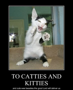 TO CATTIES AND KITTIES