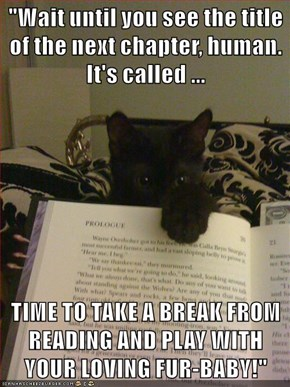 """Wait until you see the title of the next chapter, human. It's called ...  TIME TO TAKE A BREAK FROM READING AND PLAY WITH YOUR LOVING FUR-BABY!"""