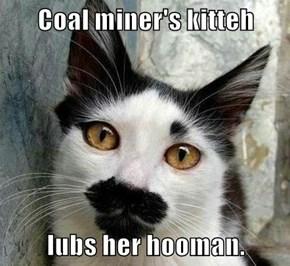 Coal miner's kitteh  lubs her hooman.