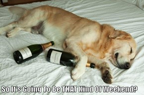 So It's Going To Be THAT Kind Of Weekend?