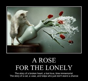 A ROSE FOR THE LONELY