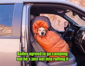 Autumn camping trip