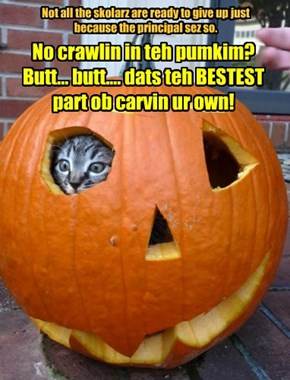 No crawlin in teh pumkim? Butt... butt.... dats teh BESTEST part ob carvin ur own!