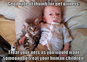 Good rule of thumb for pet owners:  Treat your pets as you would want someone to treat your human children.