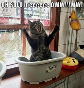 OH SOLO meeeeee OWWWWW!