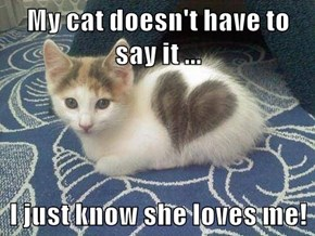 My cat doesn't have to say it ...  I just know she loves me!