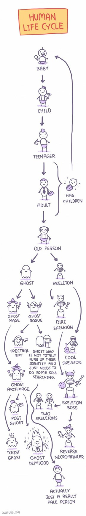 The Most Accurate Representation of The Human Life Cycle