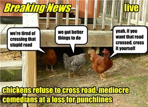 Breaking News chickens refuse to cross road. mediocre comedians at a loss for punchlines