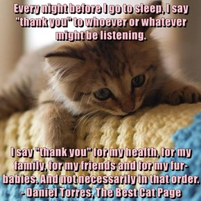 """Every night before I go to sleep, I say """"thank you"""" to whoever or whatever might be listening.  I say """"thank you"""" for my health, for my family, for my friends and for my fur-babies. And not necessarily in that order.              - Daniel Torres, The Best"""