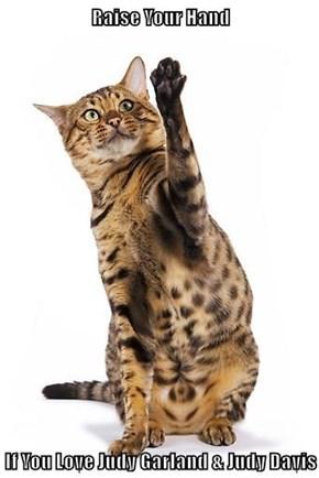 Raise Your Hand  If You Love Judy Garland & Judy Davis