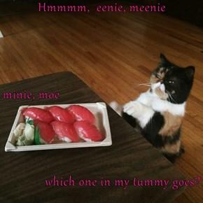 Hmmmm,  eenie, meenie minie, moe which one in my tummy goes?