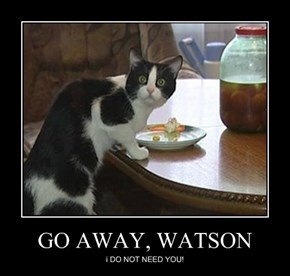 GO AWAY, WATSON