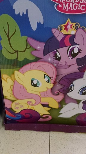Uh....Fluttershy?