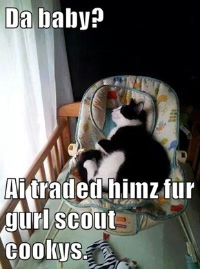Da baby?  Ai traded himz fur gurl scout cookys.