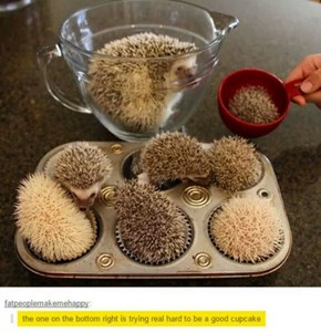 These Must Be No-Bake Cupcakes