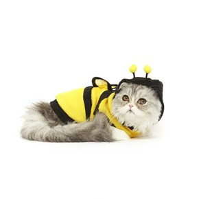 Cat Halloween Costumes That Make the Pumpkin Spice Season Complete