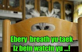 Ebery  breath yu taek Iz bein watcin yu ...!