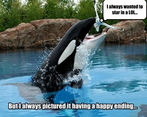 Well, it kinda does...if you're the Orca