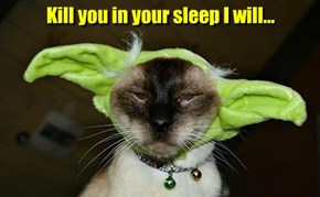 Kill you in your sleep I will...