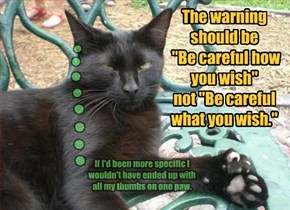 """The warning should be  """"Be careful how you wish""""  not """"Be careful what you wish."""""""