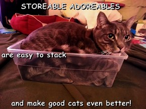 STOREABLE ADOREABLES are easy to stack    and make good cats even better!
