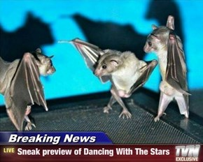 Breaking News - Sneak preview of Dancing With The Stars