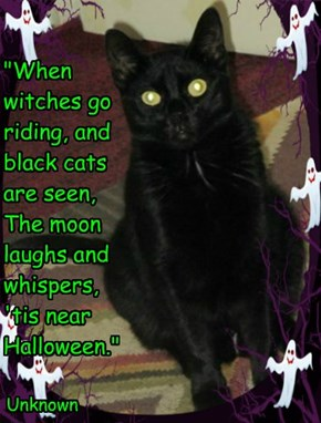 """""""When witches go riding, and black cats are seen, The moon laughs and whispers, 'tis near Halloween."""""""