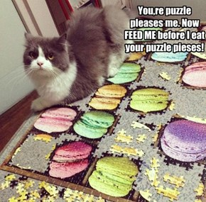 You,re puzzle pleases me. Now FEED ME before I eat your puzzle pieses!