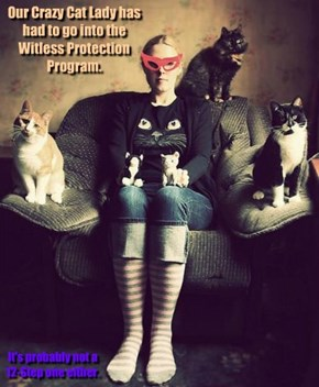 Our Crazy Cat Lady has had to go into the Witless Protection Program.