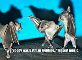"""Everybody was Batman Fighting..."" [insert music]"