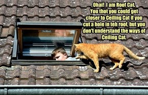 Ohai!  I am Roof Cat.  You thot you could get closer to Ceiling Cat if you cut a hole in teh roof, but you don't understand the ways of Ceiling Cat.