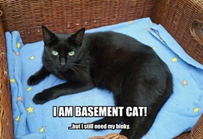 I AM BASEMENT CAT!