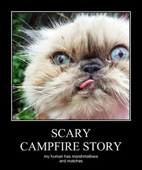 SCARY CAMPFIRE STORY