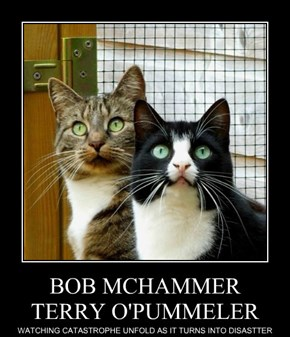 BOB MCHAMMER TERRY O'PUMMELER